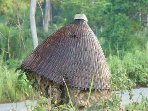 Panier termitière