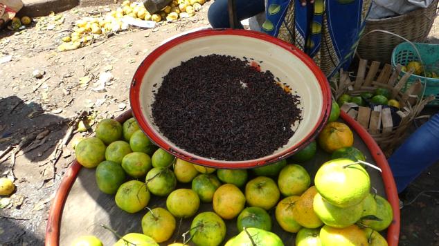 Termites marché Mfoundi